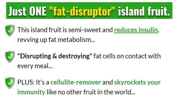 fat-disruptor-ingredients